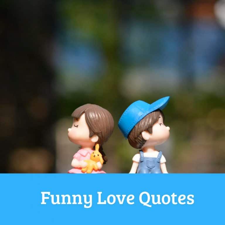 Top 35 Funny Love Quotes