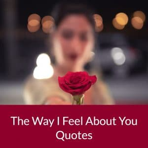 The Way I Feel About You Quotes