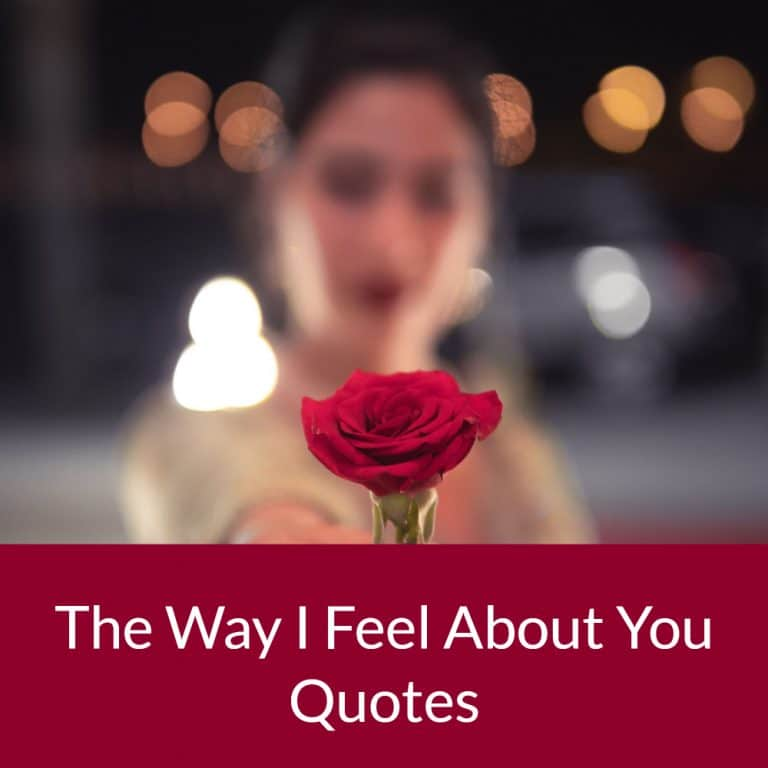 Top 29 The Way I Feel About You Quotes