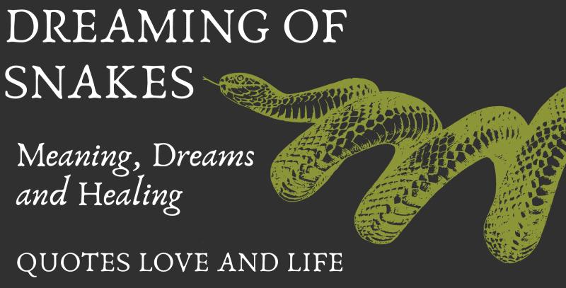 dreaming of snakes snake dream meaning
